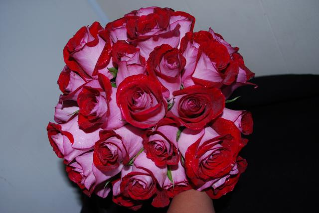 Brides Bouquet Red and Pink Roses for the Wedding